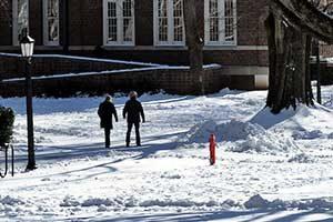 Snow on Polk Place
