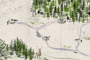 Meeting of the Waters Creek Map